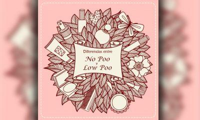 Diferencias entre No Poo y Low Poo