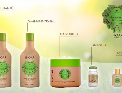 Beneficios de la Nuez de Macadamia